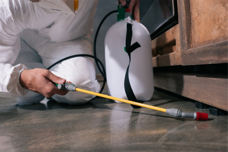 A pest control worker spraying pesticides on the floor beneath furniture