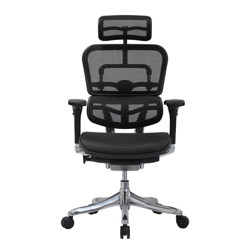 Ergohuman Enjoy Classic EJBS-HBM-F Smart Design Chair / Office Chair